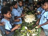 School kids learn to cook balanced meals
